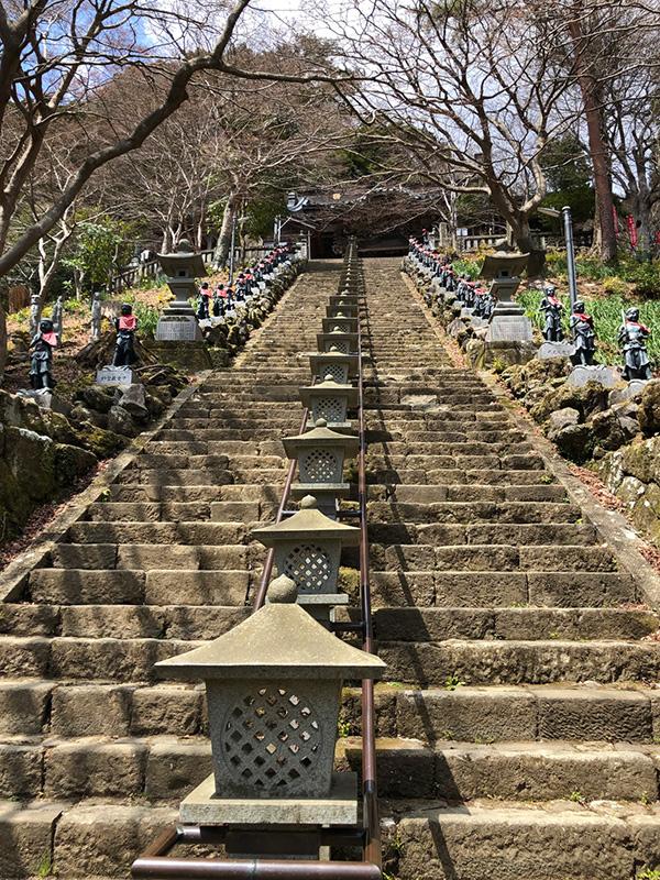 富士川先生コラム19年6月石階段