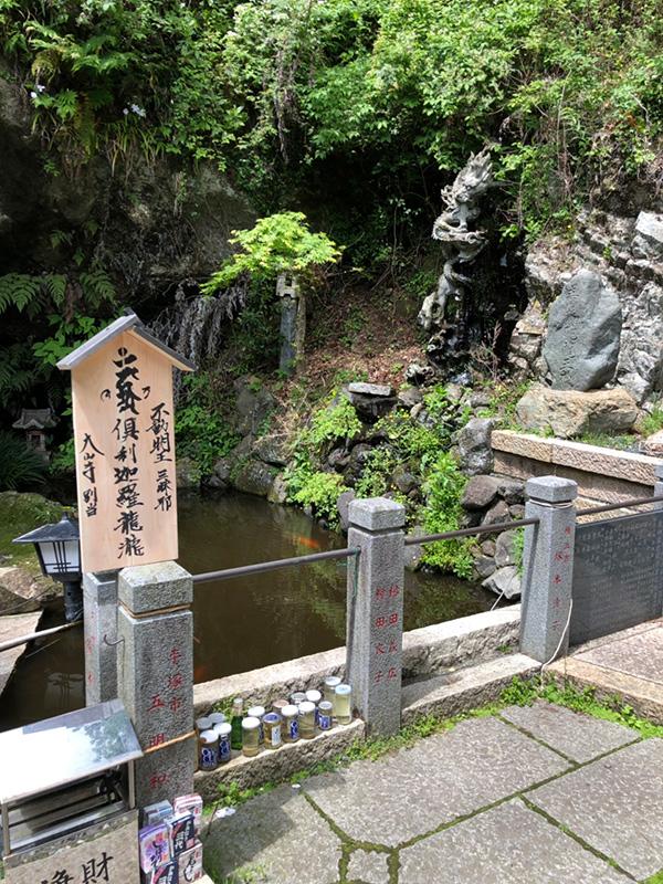 富士川先生コラム19年6月滝