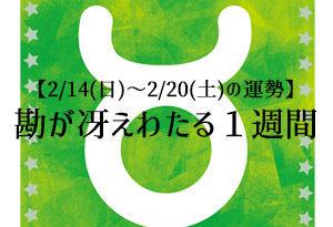 【2/14(日)~2/20(土)の運勢】富士川碧砂の12星座別・宝くじ占い